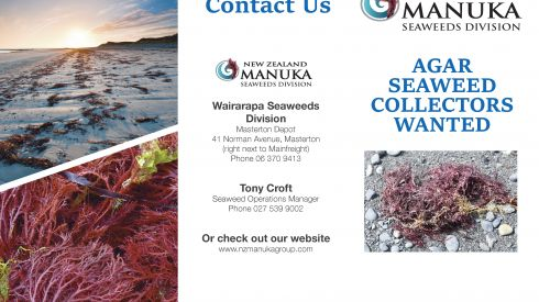 Agar Seaweed Collectors Wanted Flyer