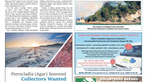 The Informer: 8 June, 2016 - Collect Seaweed and Earn Money