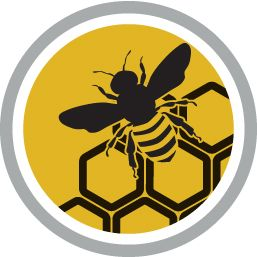 New Bee Nutrition Solution Keeps Bees Humming