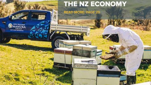 Business Plus: Oct 2016 - Busy Bees Growing the NZ Economy